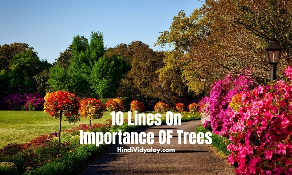 10 Lines On Importance Of Trees In Hindi And English Language