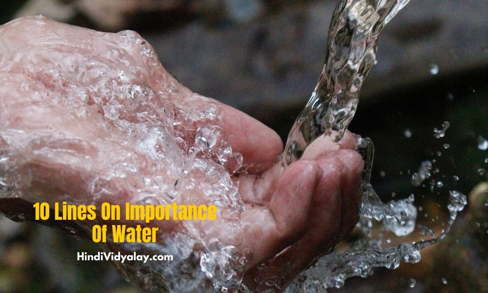 10 Lines On Importance Of Water In Hindi And English Language