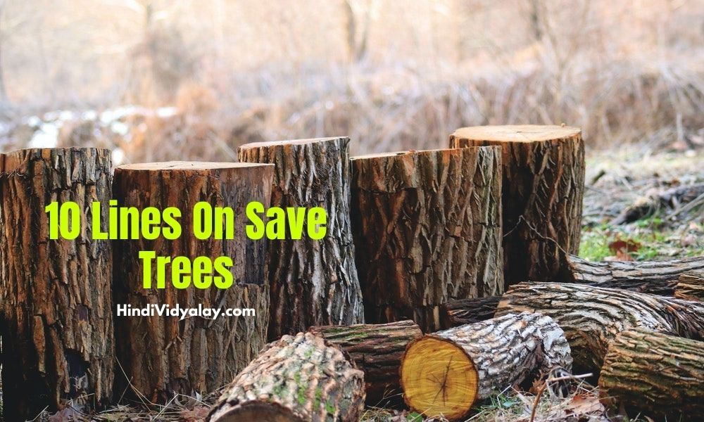 10 Lines On Save Trees In Hindi And English Language