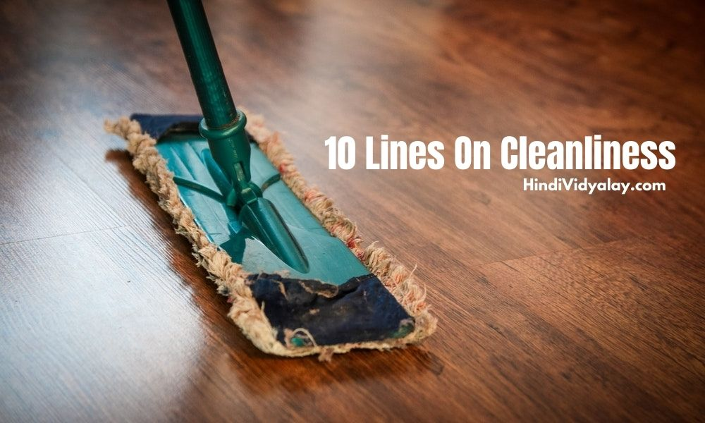 10 Lines On Cleanliness In Hindi And English Language