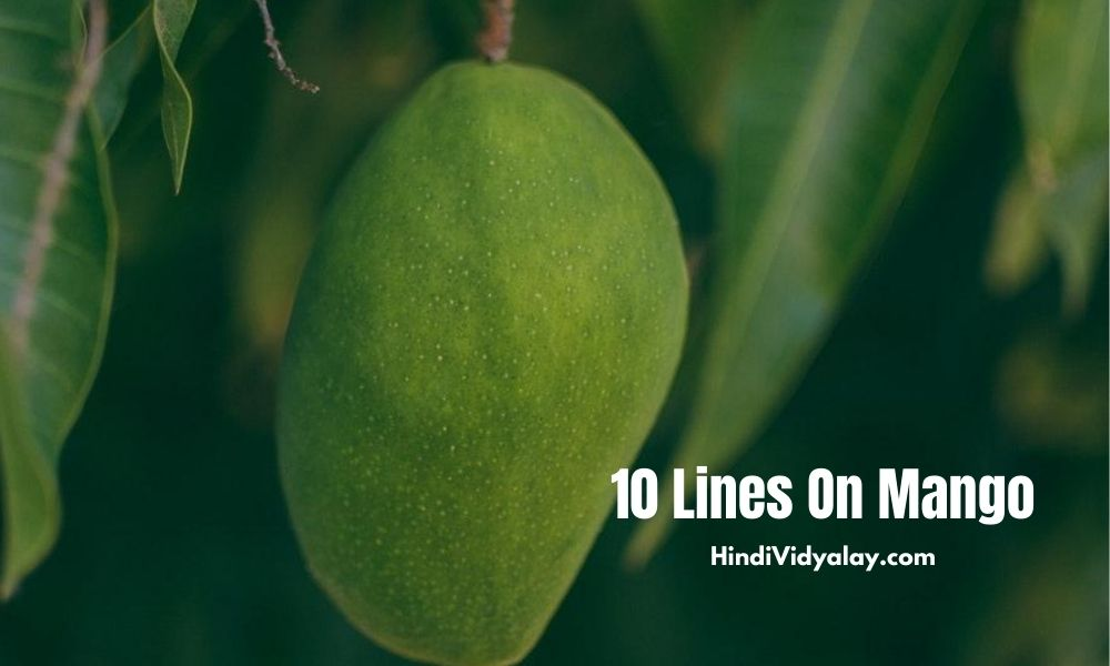 10 Lines On Mango In Hindi And English Language