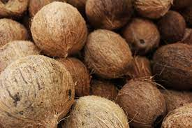 Dry Fruit Name - Dry Coconut