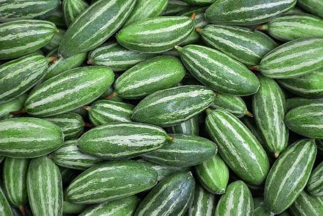 Vegetable Name - Pointed Gourd