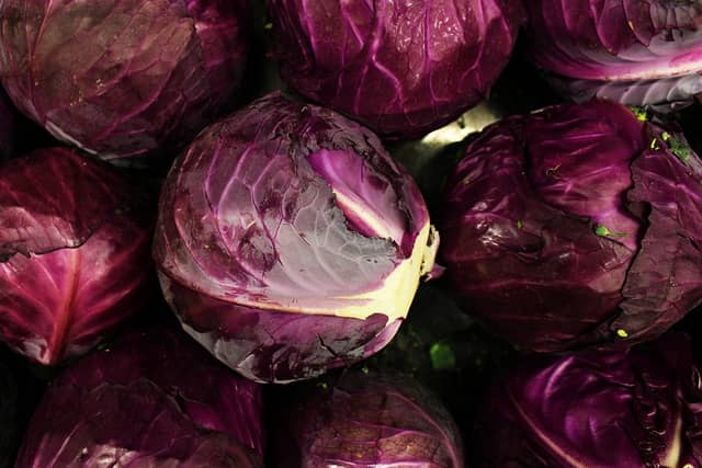 Vegetable Name - Red Cabbage
