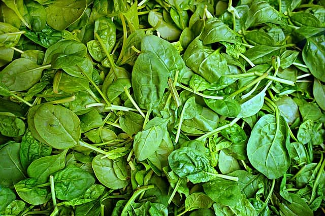 Vegetable Name - Spinach